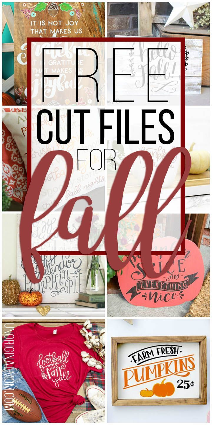 Free Cut Files for Fall #cricutexploreair2projects