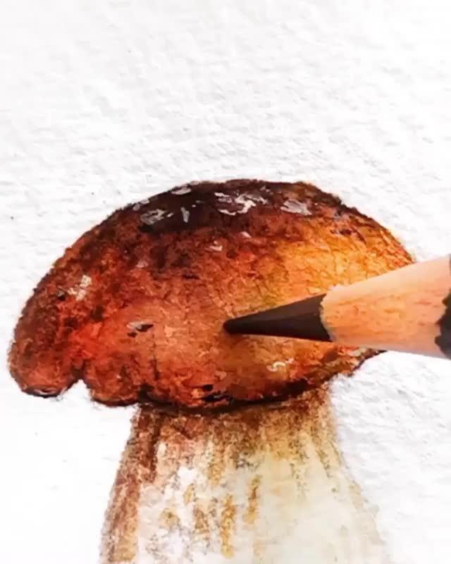 watercolor mushroom