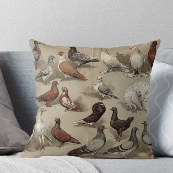 Pigeon Breeds Chart Throw Pillow By Bluespecsstudio Bird Repellents Pigeon Breeds Throw Pillows
