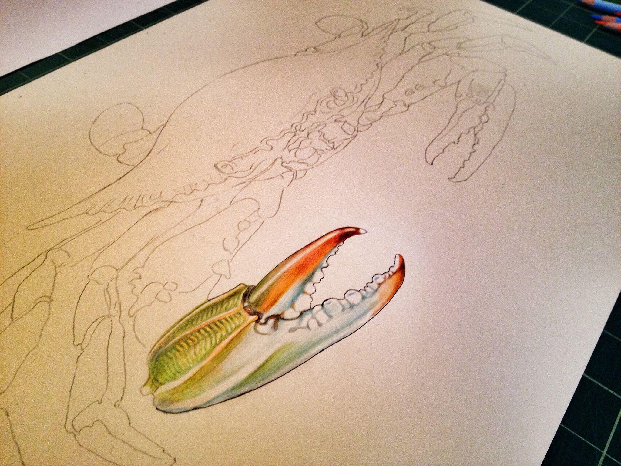 Pin de Mary Lanclos en colored pencil techniques | Pinterest