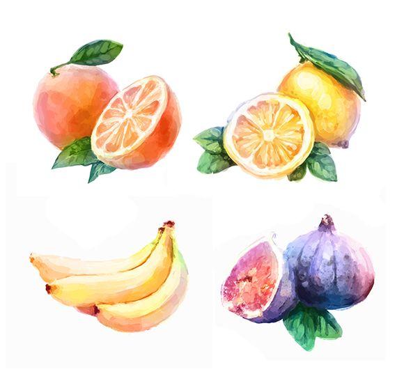 20 Watercolor Fruits Vector Bonus Watercolor Fruit Fruit