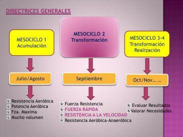 Periodización Del Entrenamiento Ii Periodizacion Entrenamiento