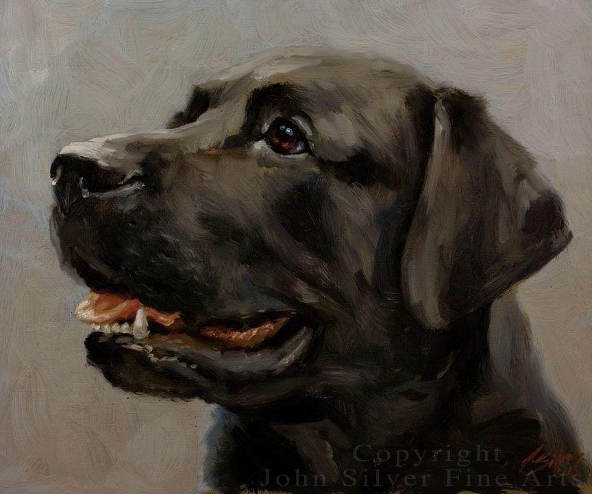 Black Labrador Retriever Original Oil Painting By John Silver Ba No Reserve Dog Portraits Pet Portraiture Dog Art