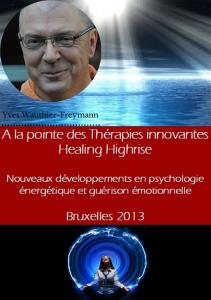 iipeca academy conférence healing highrise 2013 yves wauthier-freymann