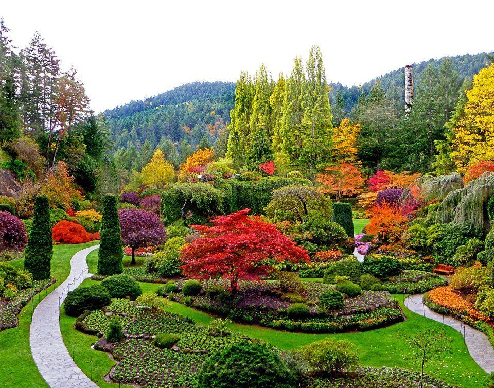 Seven breathtaking botanical gardens around the world for Botanical garden designs