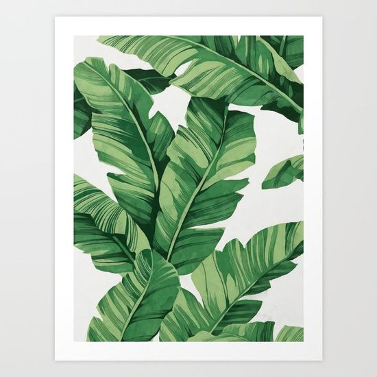 Tropical Banana Leaves Art Print By CatyArte Worldwide Shipping Available At Society6 Just One Of Millions High Quality Products