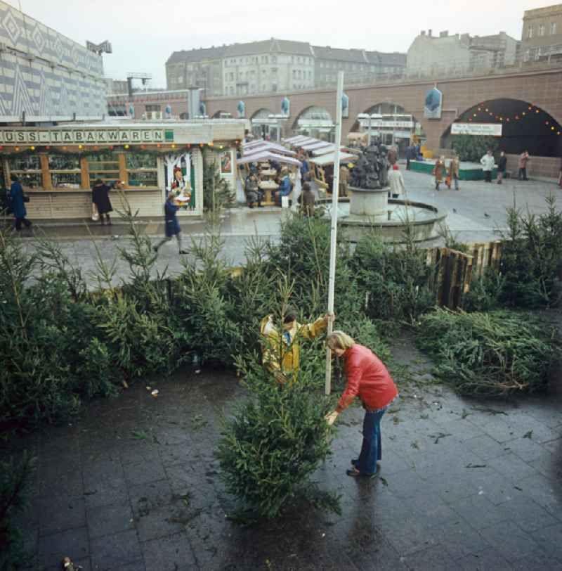 Weihnachtsbaumverkauf In Berlin Mitte Berlin Berlin Mitte Urheber