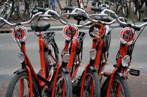 Bike Tour Amsterdam Mac Bike Offers The Best Bike Tours In