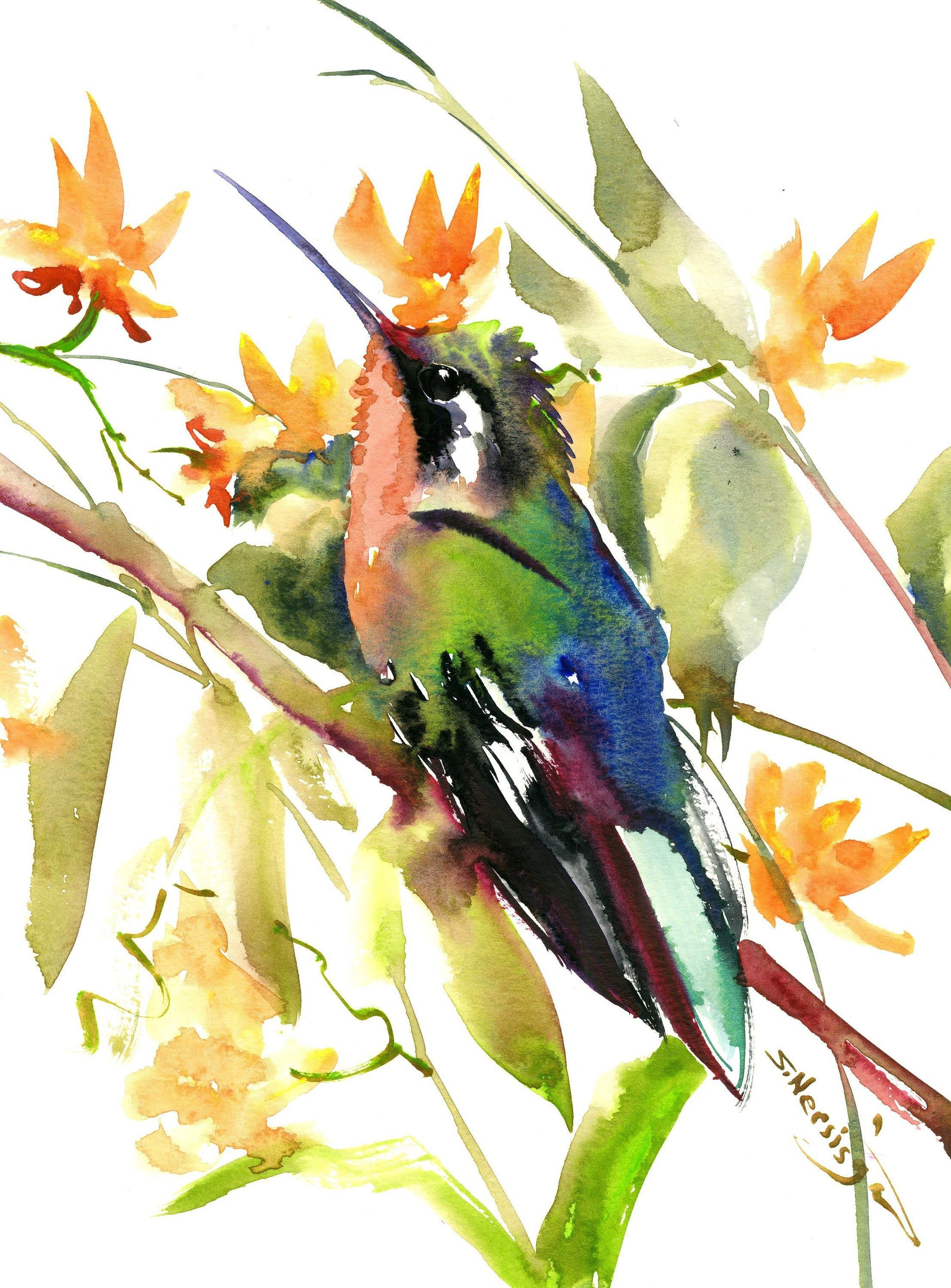 Hummingbird And Flowers Original Watercolor Painting By