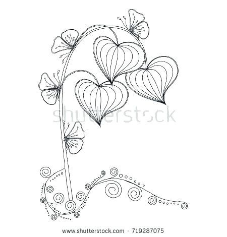 plant life cycle coloring page plant life cycle coloring