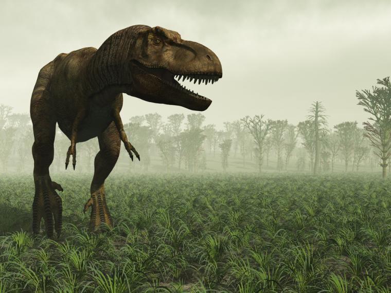 Dinosaurios En Muyinteresante Es Dinosaurios Fotos De Dinosaurios Asteroides