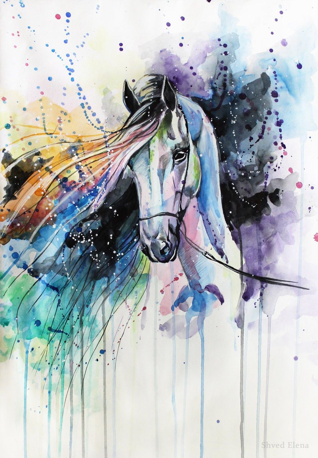 painting elena shved des chevaux hauts en couleur peinture pinterest cheval aquarelle. Black Bedroom Furniture Sets. Home Design Ideas