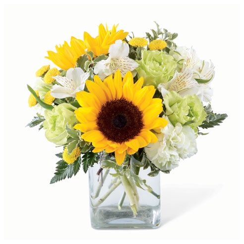 Free delivery flowers and cheap flowers for same day flower delivery