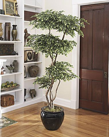 Lifelike Silk Pagoda Ficus Tree | Mini Artificial Trees By  OfficeScapesDirect Part 61