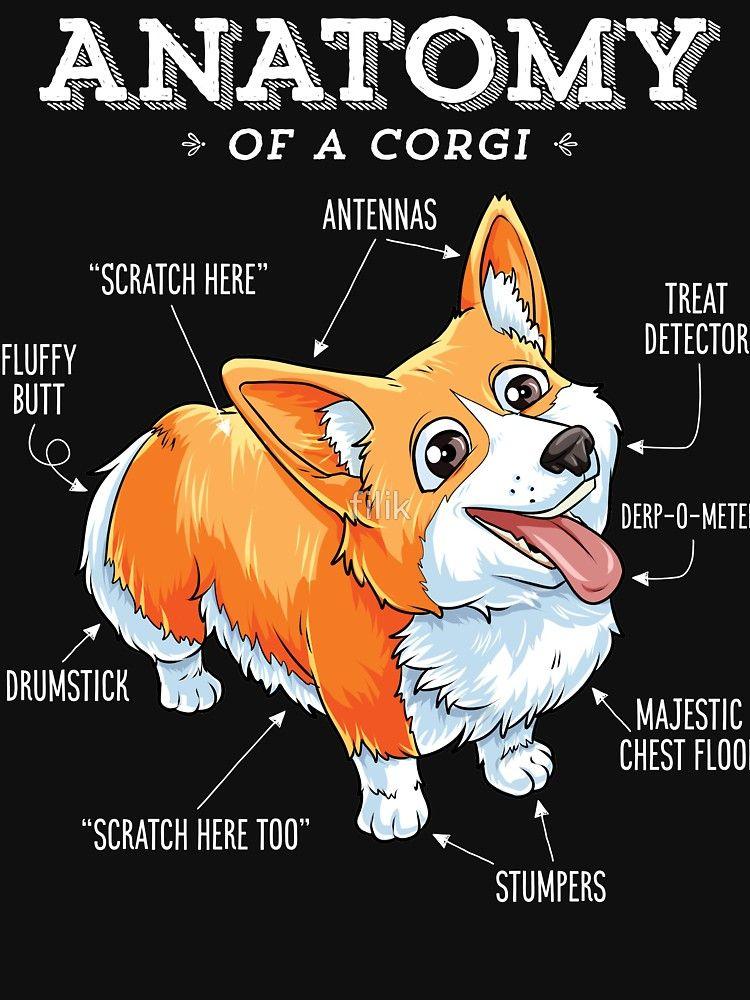 f722df0ff55 Anatomy of a Corgi T-Shirt Funny Corgis Dog Puppy Shirt by LiqueGifts
