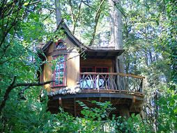 Tree Houses by Nelson