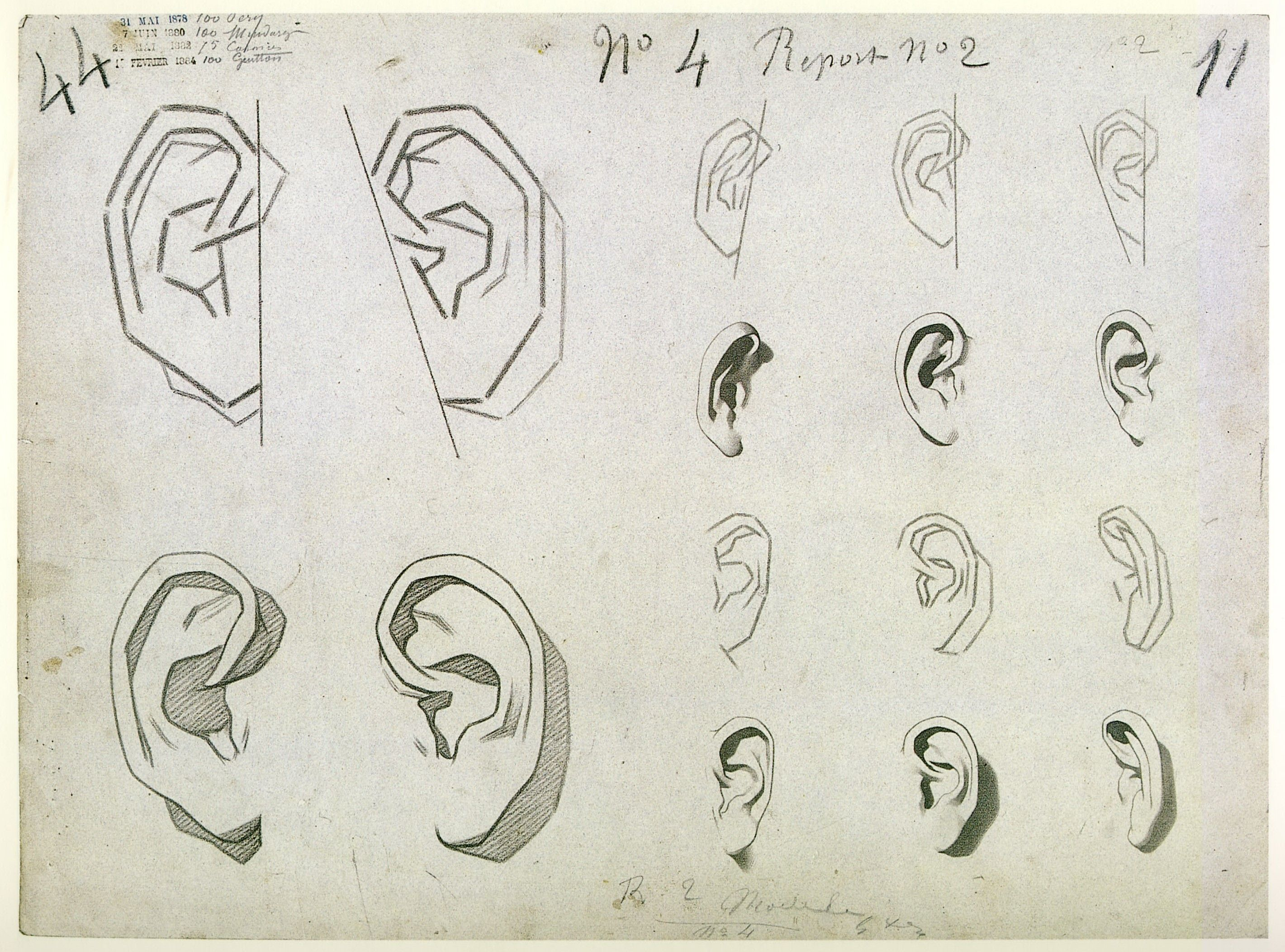 Bargue Drawing. ear ☆ || CHARACTER DESIGN REFERENCES (www.facebook ...