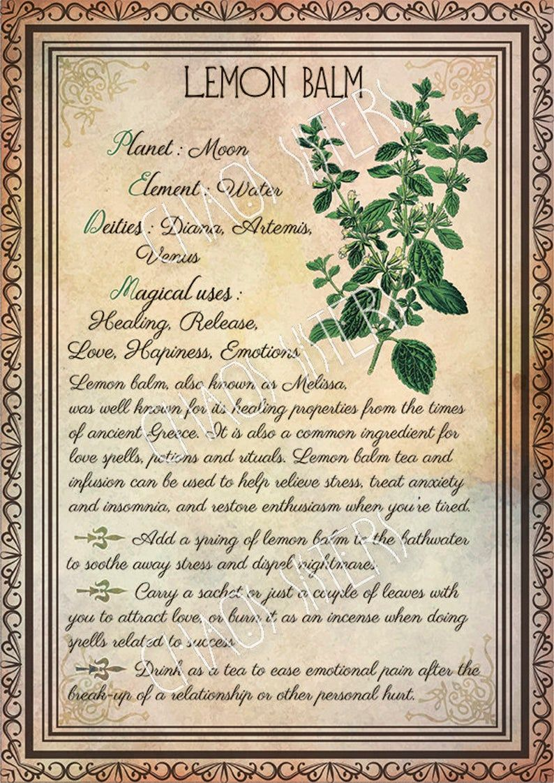 Printable Herbs Book of Shadows Pages Set 1, Herbs & Plants Correspondence, Grimoire Pages, Witchcraft, Wicca, Printable BOS