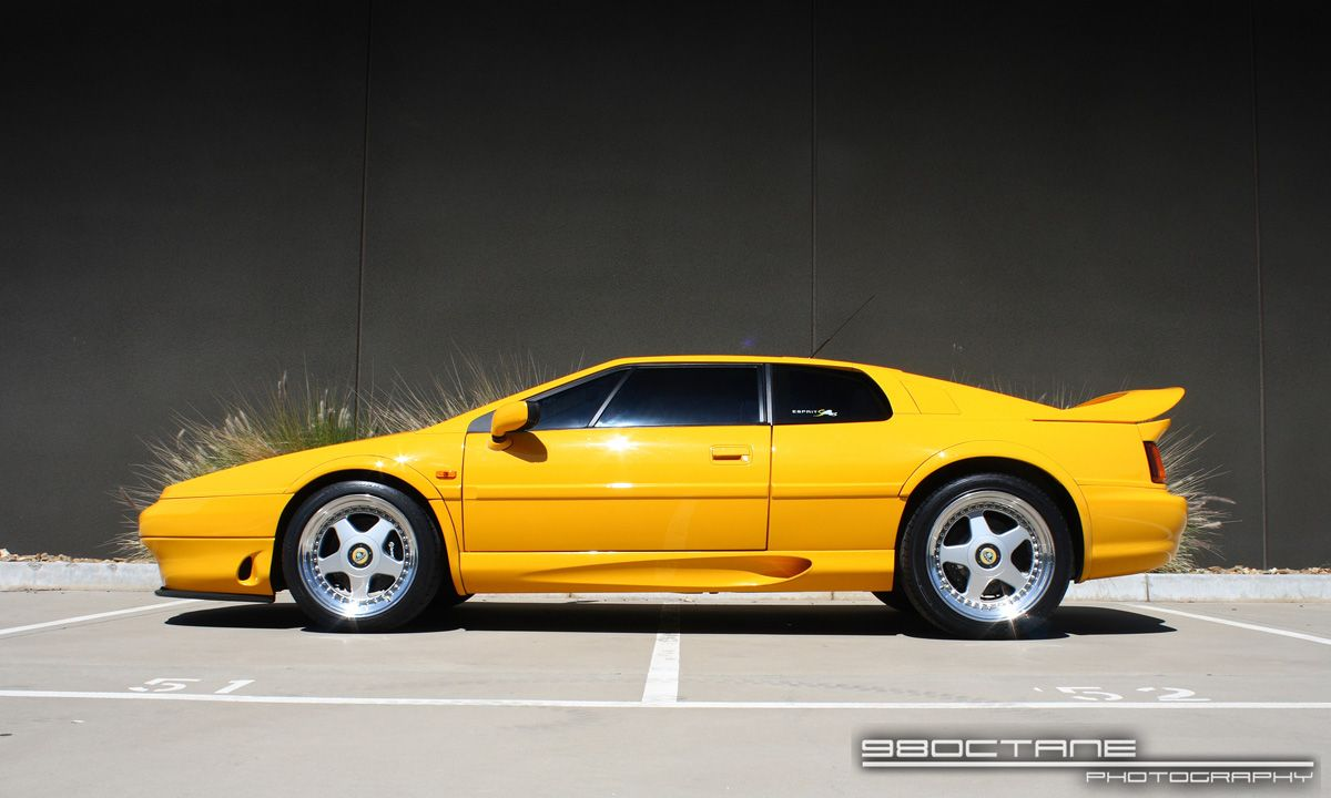 lotus esprit s4s the car just looks like it has raw power. | cars, Wiring diagram