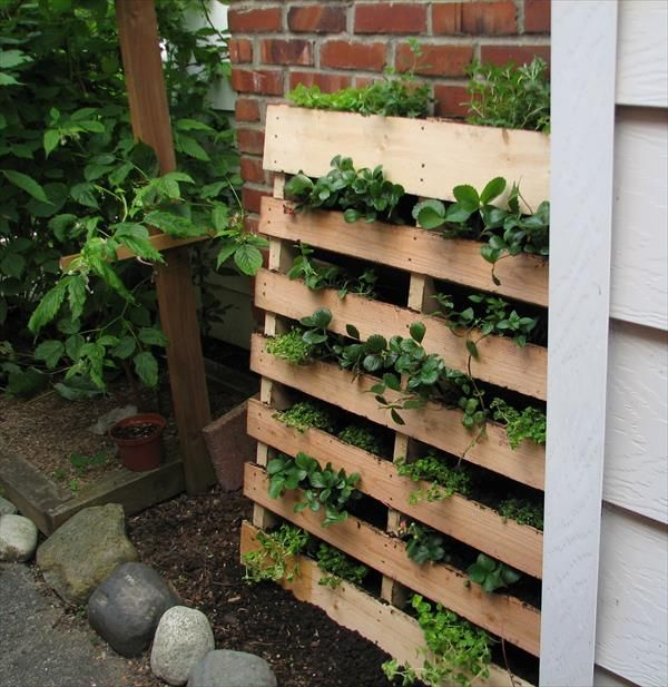 Superieur A Pallet Turned Herb Garden With Video By Seattle Seedling