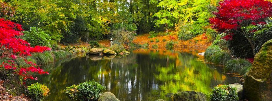 Parc Botanique De Haute Bretagne Parcs Et Jardins Bord De Mer