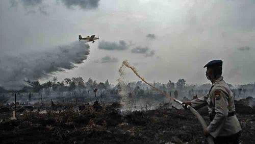 Satgas Kewalahan Padamkan Kebakaran Gambut Kepulauan Meranti Riau