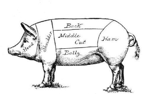 Butcher S Pig Diagram Pigs Pig Drawing Pig Illustration Pig Art