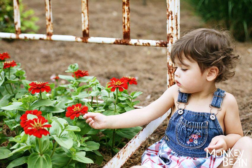 Whimsical Gardens