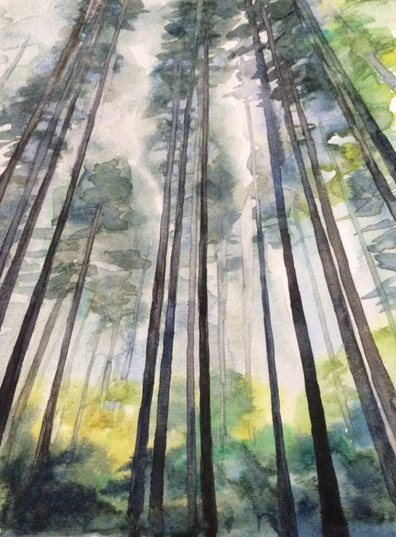 Pine Trees Watercolor Trees Forest Painting Forest Watercolor