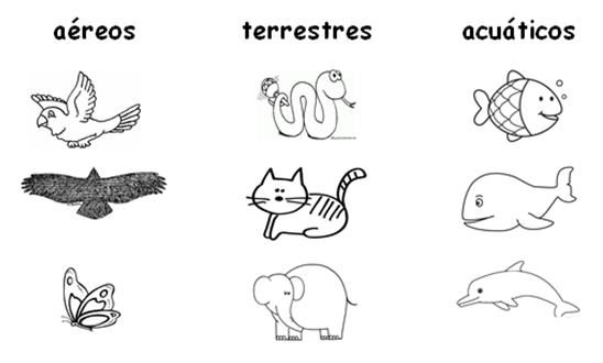 Pin De Shaky Duvalin En Animals Caracteristicas De Los Animales