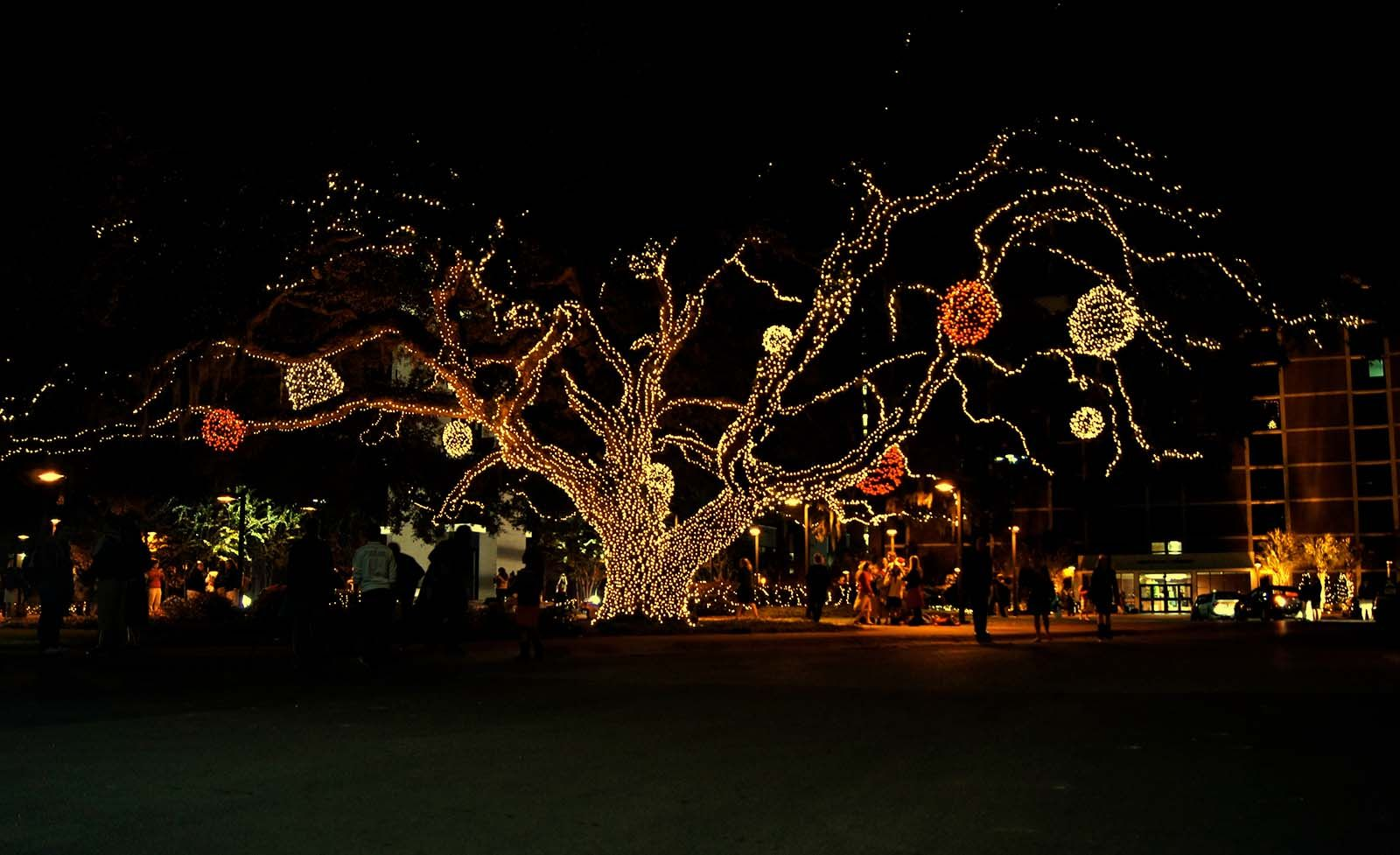 christmas lights pensacola christian college blog campus post