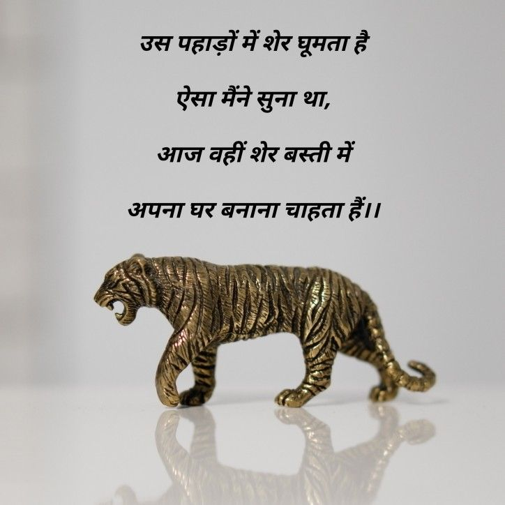 शेर #hindi #words #lines #story #short | prasadik | Poetry, Words