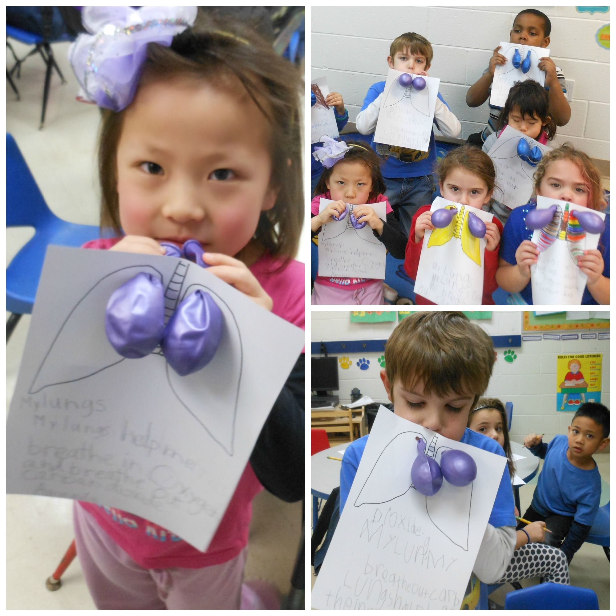 Worksheet Kindergarten Enrichment Activities our hillsborough kindergarten enrichment class loved this science activity start by having your child draw