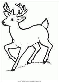 Resultado De Imagen Para Dibujos De Venados Venados Dibujo De