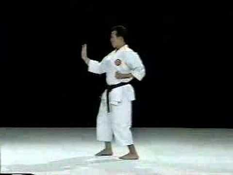 Shinpa Shito Ryu Shotokan Karate Kata Karate Martial Arts