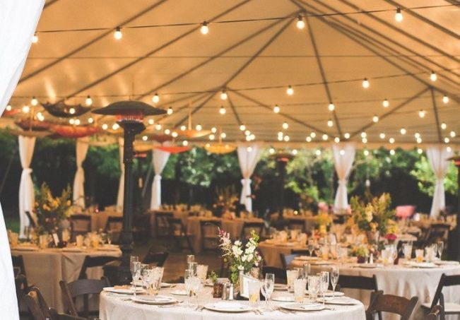 25 Backyard Wedding and Reception