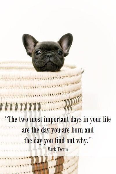 """The two most important days in your life are the day you ..."
