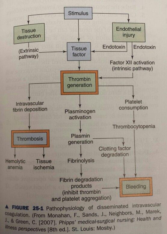 Pathophysiology of disseminated intravascular coagulation ...