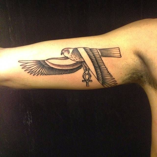 Egyptian Falcon Tattoo Related Keywords Suggestions Egyptian