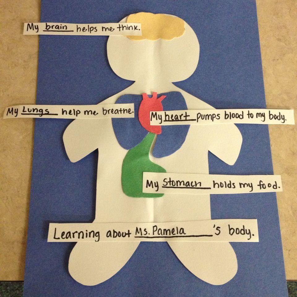 Healthy Bodies Preschool (With images) | Healthy habits ...