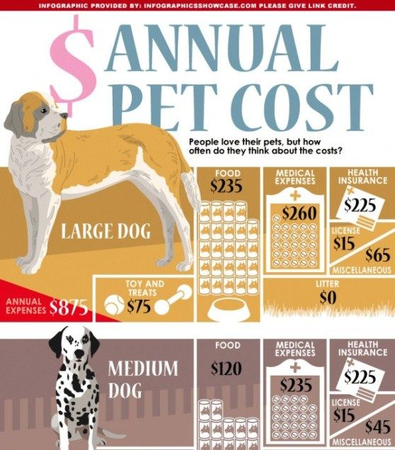 Annual Pet Cost Pets Dog Infographic Dog Training Obedience