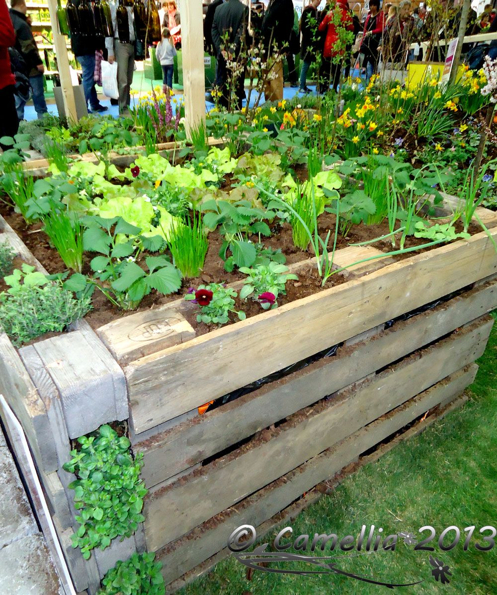 Raised garden bed from crates garden pinterest for Pallet veggie garden