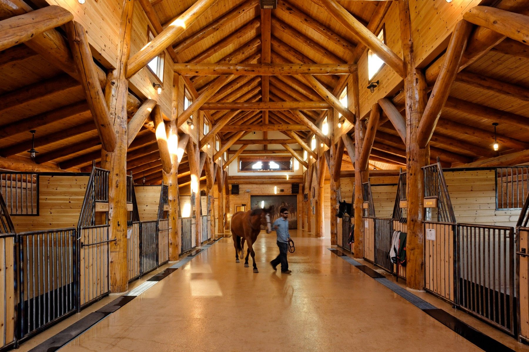 Full throttle horse ranch in carbondale colorado