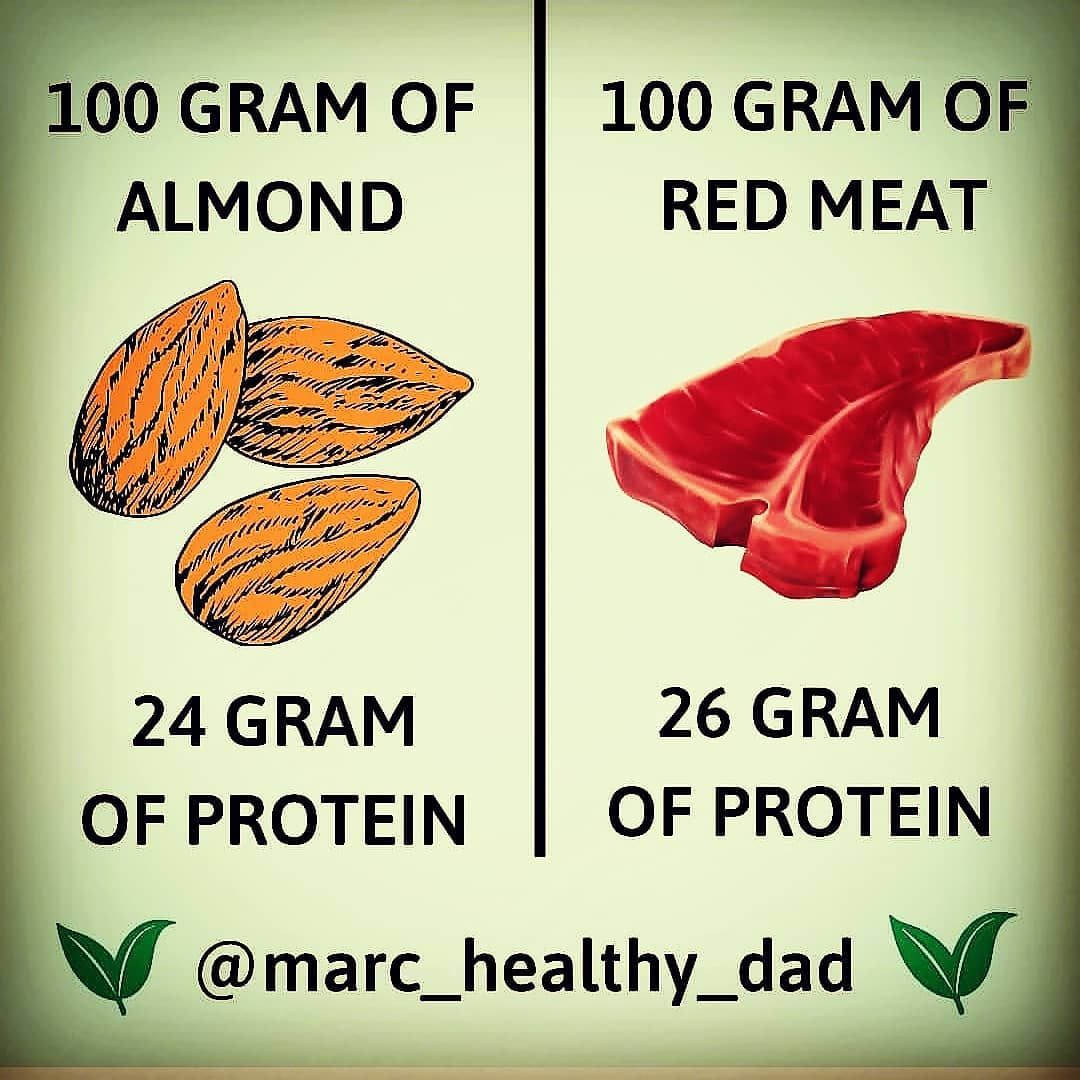 Build muscle with vegan protein!! .. .. ..workout ➡️ @the.muscles.lab Lifestyle ➡️ @fitbodymarc .. .. .. .. .. .. . #vegan #veganfood #veganlifestyle #veganchoices #veganlife #vegandad #veganprotein #veganproteins #proteinnut #proteins #protein #proteinas #healthylifestyle #healthyfood #health #healthyeating #healthychoices #bodyhealth #goodnutrition #eatvegan #eat #eatclean #eatnut #healthylifestyles #healthyfoodideas #nutritionfacts #vegannutrition #almondnails Source