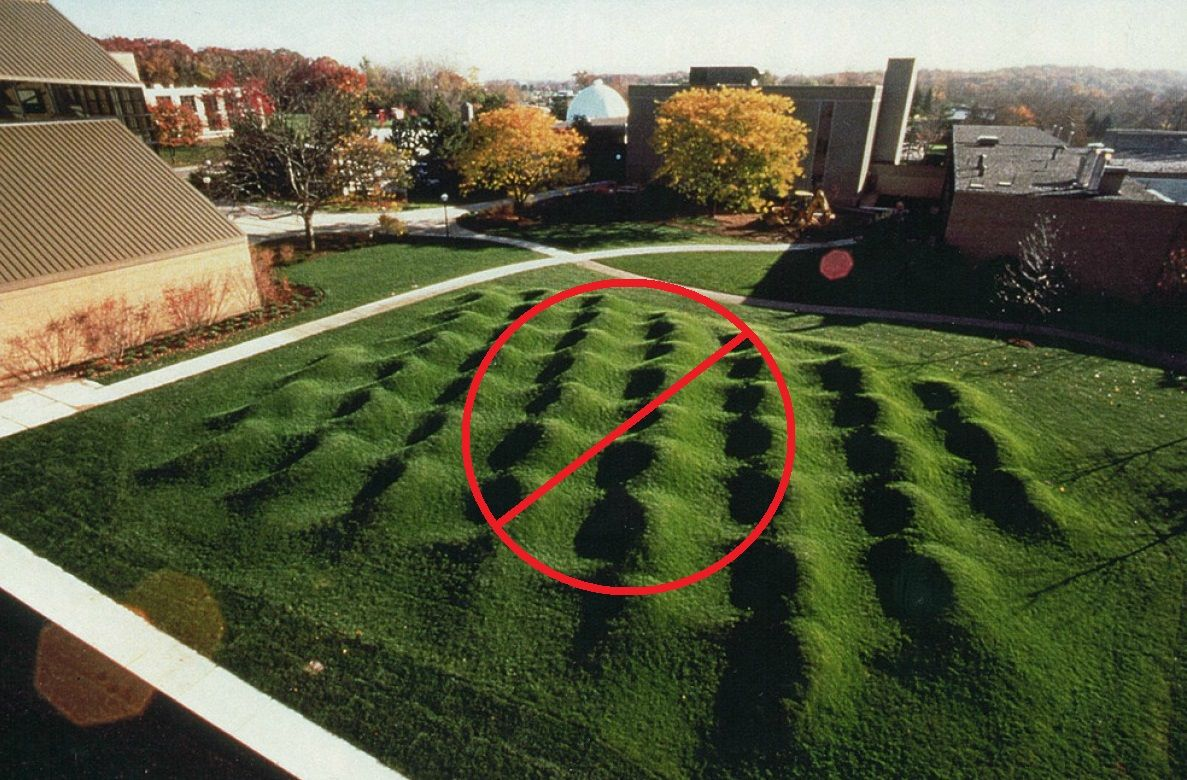 How To Level A Bumpy Lawn Diy Lawn Lawn Leveling Lawn