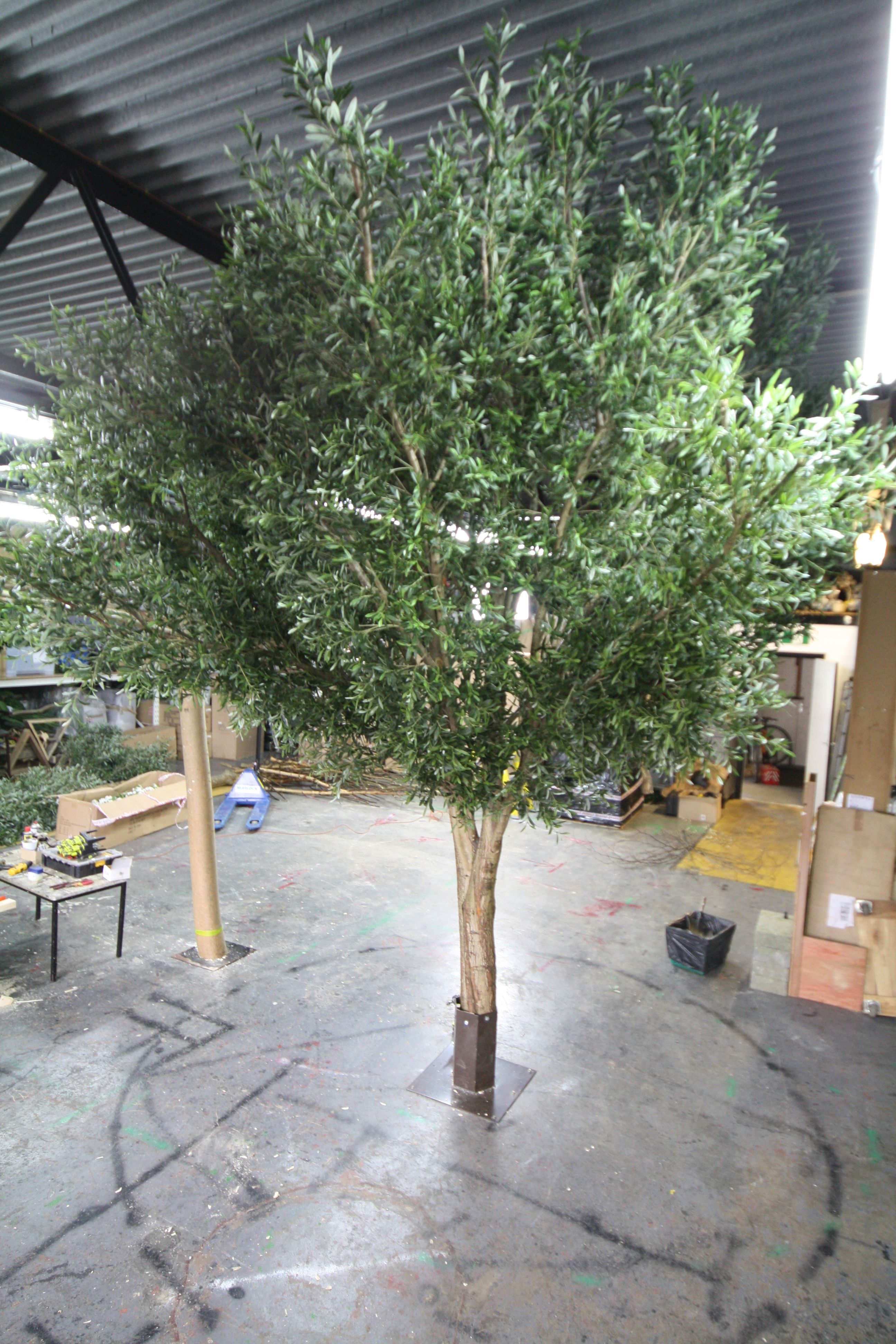 Large Decorative Artificial Olive Tree For A Restaurant In Canada Artificialolive Artificialolivetree Largeartificialtree Plantart