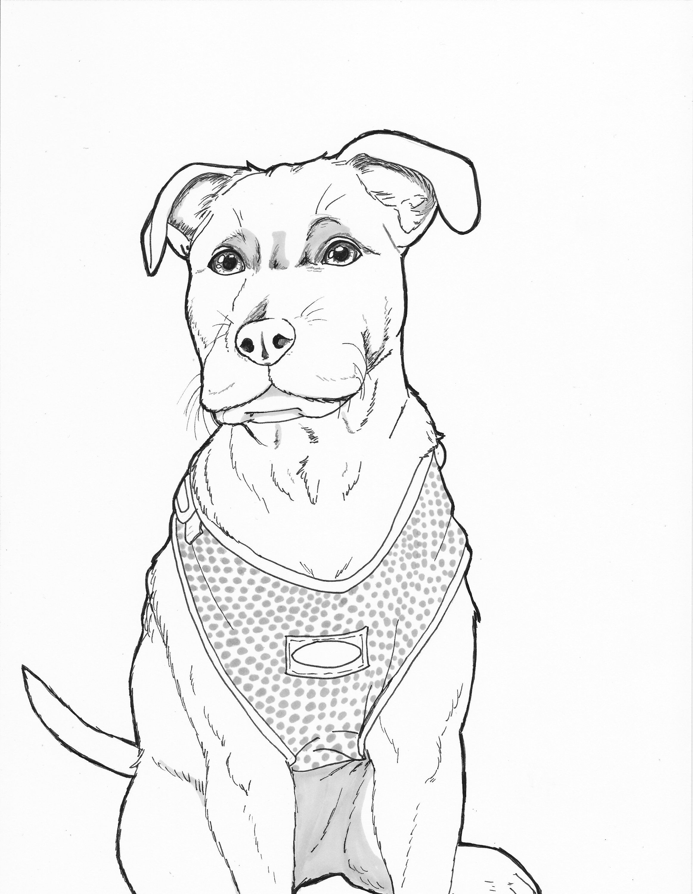 Boxer Lab Dog Coloring Page Instant Download Printable Coloring