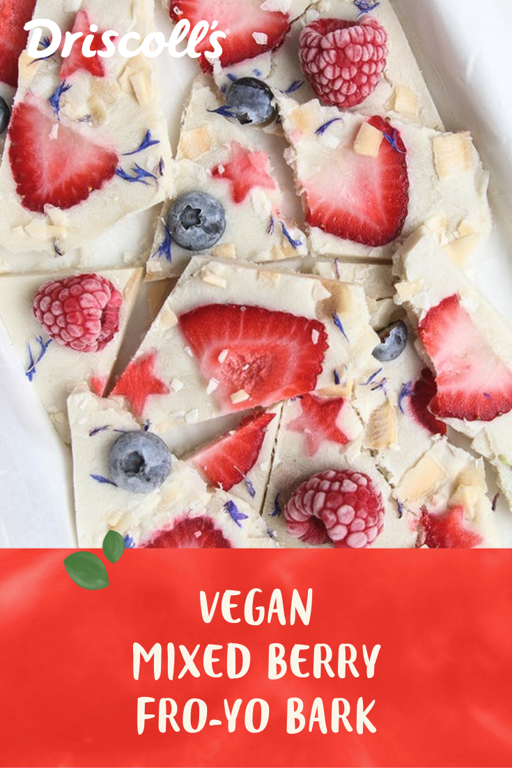 Vegan Frozen Yogurt 4th Of July Bark