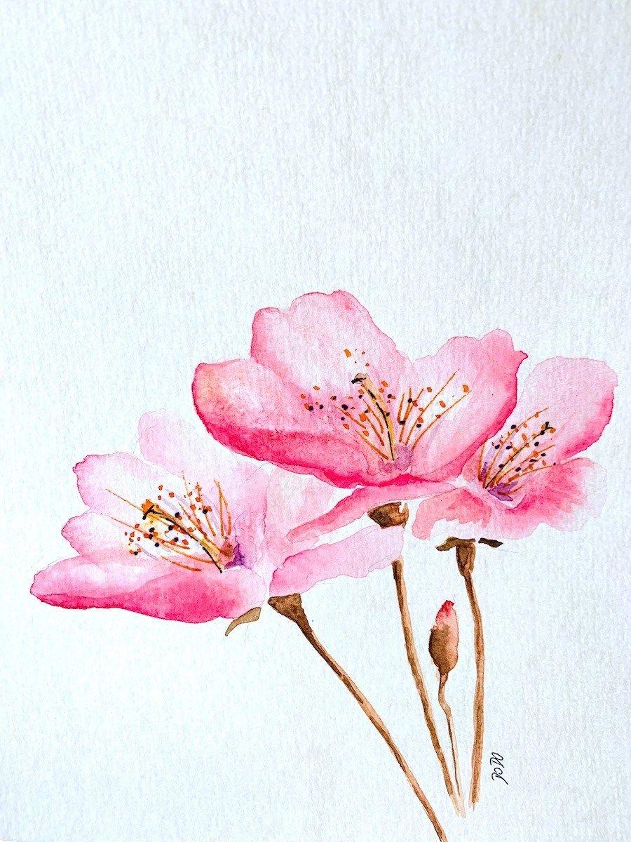 Aquarell Kirschblute Malen In 30 Minuten Blumen Aquarell