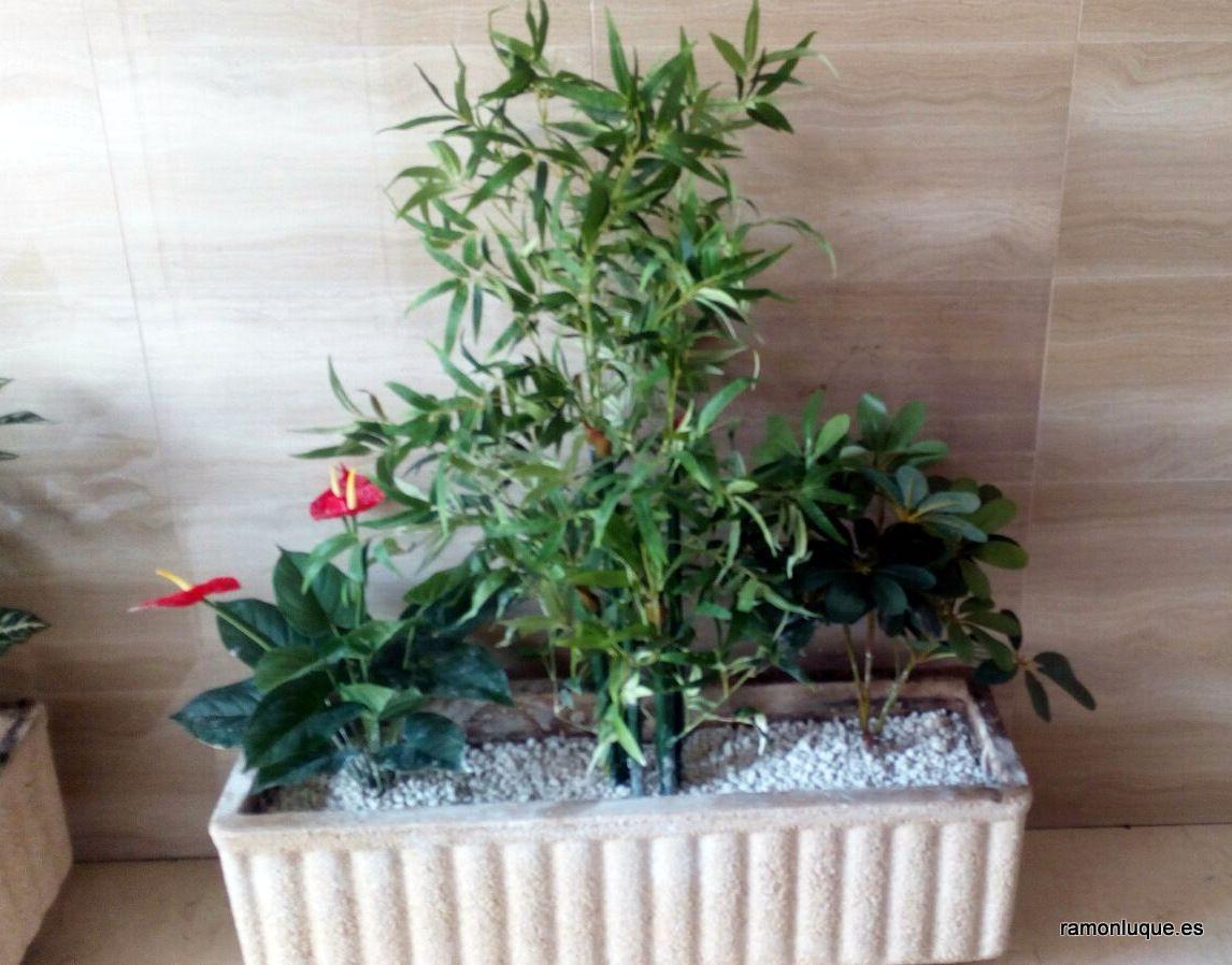 39+ Decoracion de portales con plantas ideas
